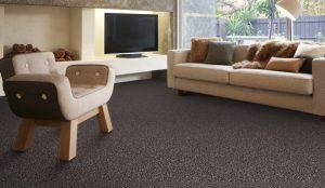Carpet for a home